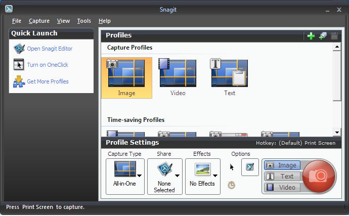 SnagIt windows