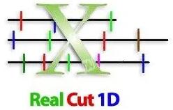 Real Cut 1D
